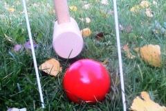 croquet 1